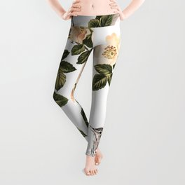 Blackberry Spring Garden - Birds and Bees Cream Flowers Leggings