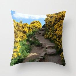 Edinburgh Scotland Path Throw Pillow
