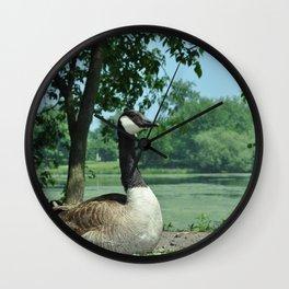Deluxe Ducks #16 Wall Clock