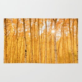 ASPENS OF AUTUMN PHOTO - COLORADO FALL IMAGE - SUN & TREES NATURE PICTURE - LANDSCAPE PHOTOGRAPHY Rug