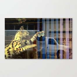 Meter Expired Canvas Print