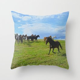 The Round Up Throw Pillow