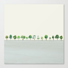 A Row Of Trees Canvas Print