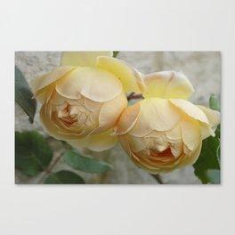 The Rose Duet Canvas Print