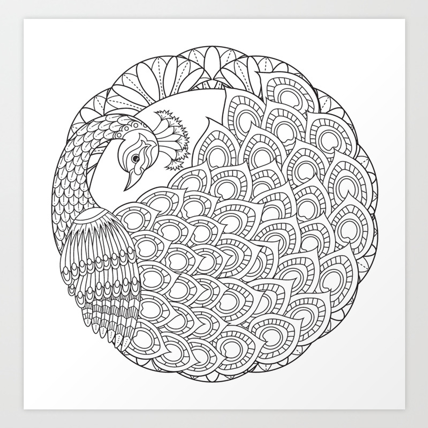 Peacock Mandala Art Color Your Own Art Print By Wendypiersallart