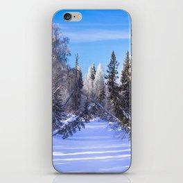 Frozen river iPhone Skin