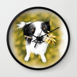 Cute Border Collie Wall Clock
