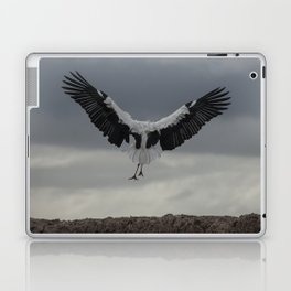Spread your wings and land Laptop & iPad Skin