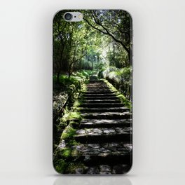Rikyuu Road iPhone Skin