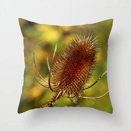 Thistle in Autum Throw Pillow