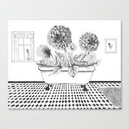 Dahlia Bath Canvas Print