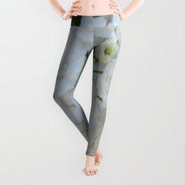 Deutzia Pure and Simple Leggings