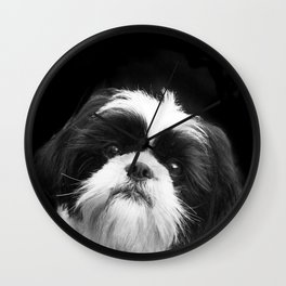 Shih Tzu Dog Wall Clock