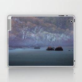 Greyson's Playground Laptop & iPad Skin