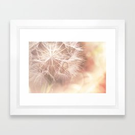 Pink Macro (2) Dandelion Flower - Floral Nature Photography Art and Accessories Framed Art Print