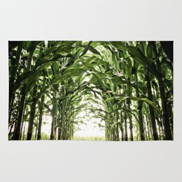 Midwest Corn Rug