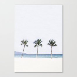 Palm trees 6 Canvas Print