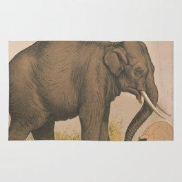 Vintage Elephant Illustration (1874) Rug