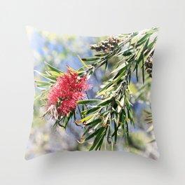 Beautiful Red Bottle Brush flower Throw Pillow