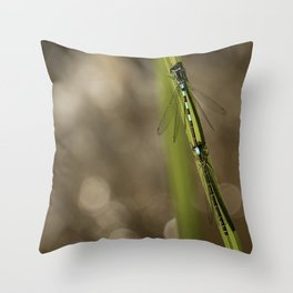 Two Damselflies Throw Pillow