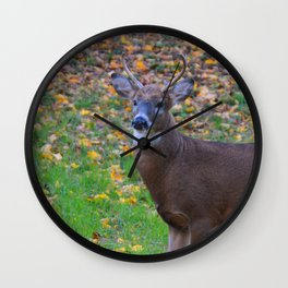 Curiosity of Youth Wall Clock