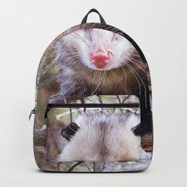 Possum Staredown Backpack