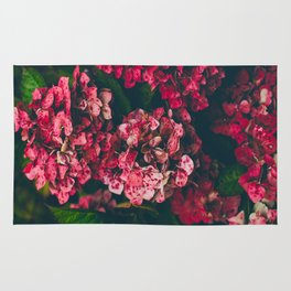 Christmas Hydrangea Red Floral Green Leaves Supple Flowers In The Garden Rug