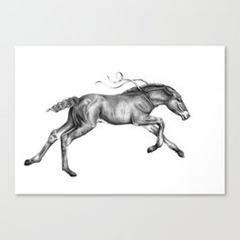 Contra viento /Running horse Canvas Print