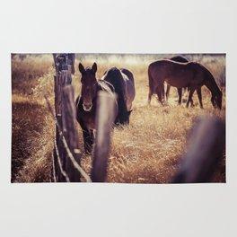 Horse in Golden Grass Rug
