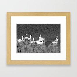 Tundra Migrants Framed Art Print