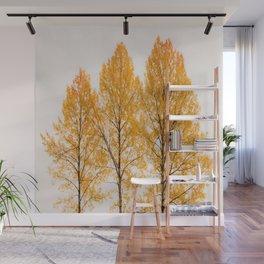 Aspen Trees #decor #buyart #society6 Wall Mural