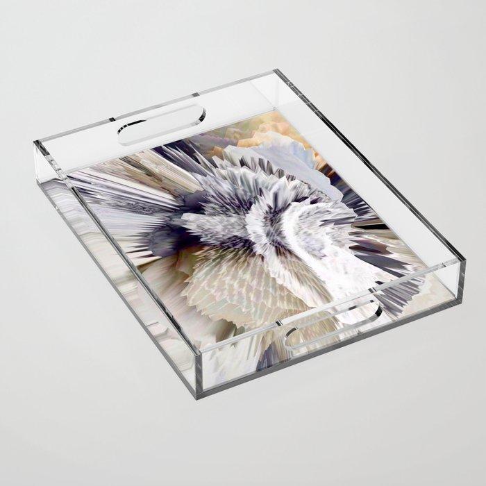 Lien Acrylic Tray