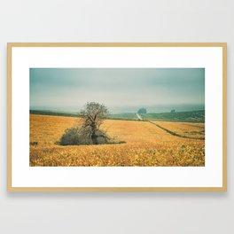 The field in autumn Framed Art Print