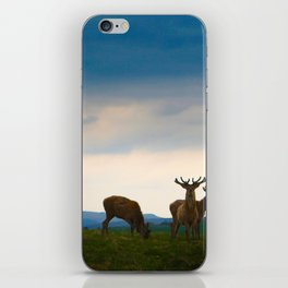 Deer On The Highland iPhone Skin