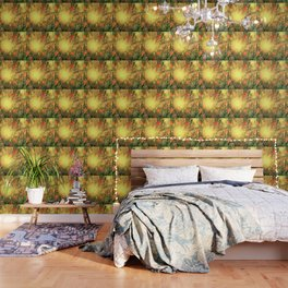 Sunny Beech Wallpaper