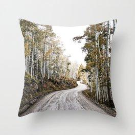 A Winding Autumn Road Throw Pillow