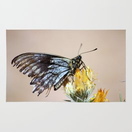 Butterfly with torn wings Rug