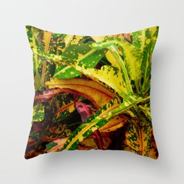 Tropical Croton Plant Throw Pillow