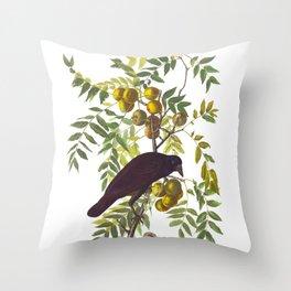American Crow Vintage Bird Illustration Throw Pillow