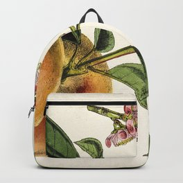 A peach plant - vintage illustration Backpack