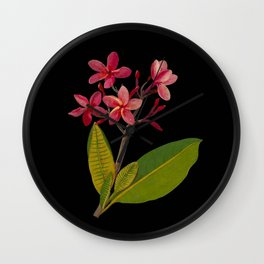 Plumeria Rubra Mary Delany Floral Paper Collage Delicate Vintage Flowers Wall Clock