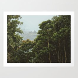 Deep Dark Rainforest Art Print