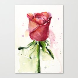 Rose Watercolor Red Flower Painting Floral Flowers Canvas Print