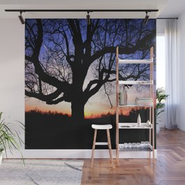 Darkness Against Sunset Wall Mural