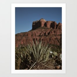 Chasing Red Rocks Art Print
