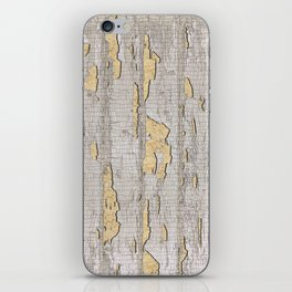 Cracked Paint iPhone Skin