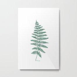 New Zealand Tree Fern Metal Print