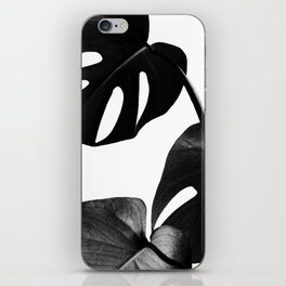 Palm Leaf iPhone Skin