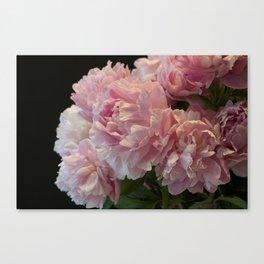 Pink Peony Passion Canvas Print