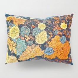 Lichen Art Pillow Sham